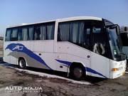 Пассажирские перевозки комфортабельным автобусом MAN 35