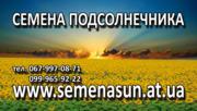семена подсолнечника pioneer, syngenta 150$ 0999659222