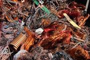 лом и отходы цветных металлов