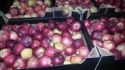 Фрукты и овощи из Польши