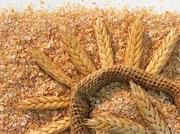 Компания производит и реализует пшеничные отруби