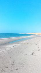 Продам участок 25 соток на берегу Азовского моря.