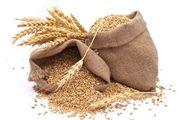 Компания ДОРОГО купит на элеваторах,  с поля,  в хозяйствах пшеницу,  рап