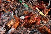 Лом черных и цветных металлов по высокой цене в Запорожье порезка вывоз