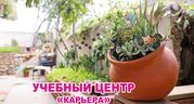 Курсы ландшафтного дизайна в Запорожье. Звоните