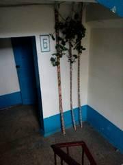 Квартира на Песках!