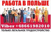 Внимание! Беcплатные,  легальные ваканcии в Белоcтоке,  Польша.